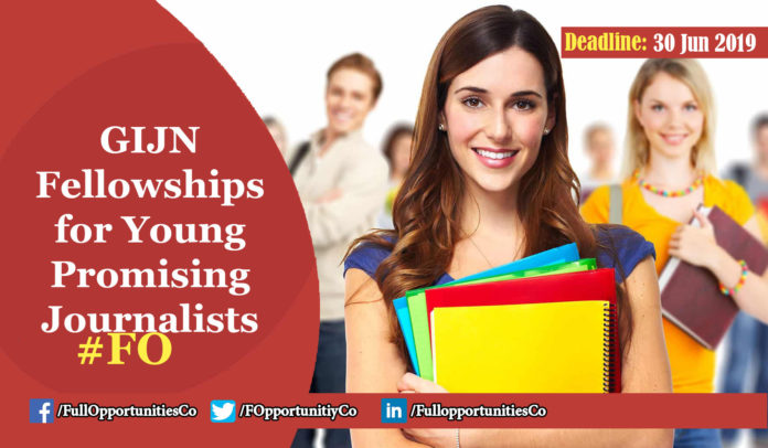 GIJN Fellowships for Young Promising Journalists