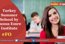 Turkey Summer School by Yunus Emre Institute 2019