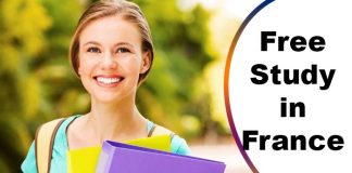 Eiffel Excellence Scholarship 2020 by French Government