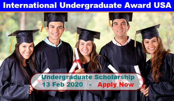 International Undergraduate Excellence Award 2020 in UK