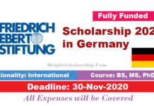 Friedrich Ebert Foundation Scholarship 2021 in Germany (Fully Funded)