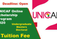 UNICAF Online Scholarship Program 2020 for International Students