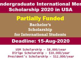 Undergraduate International Merit Scholarship 2020 in USA
