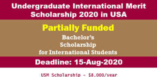 Undergraduate International Merit Scholarship 2020 in USA