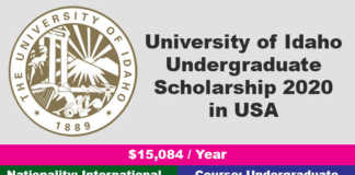 University of Idaho Undergraduate Scholarship 2020 in USA
