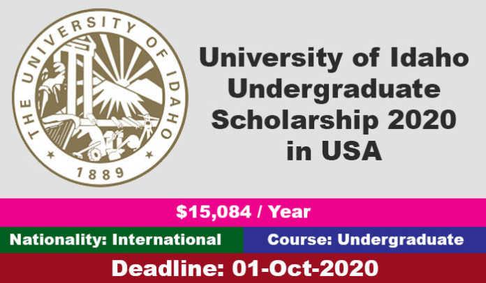 University of Idaho Undergraduate Scholarship 2020 in USA