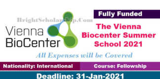 Vienna Bio Center Undergraduate Fellowships 2021 in Austria (Fully Funded)
