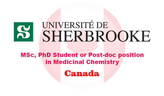 MSc, PhD student or Post-doc position in Medicinal Chemistry
